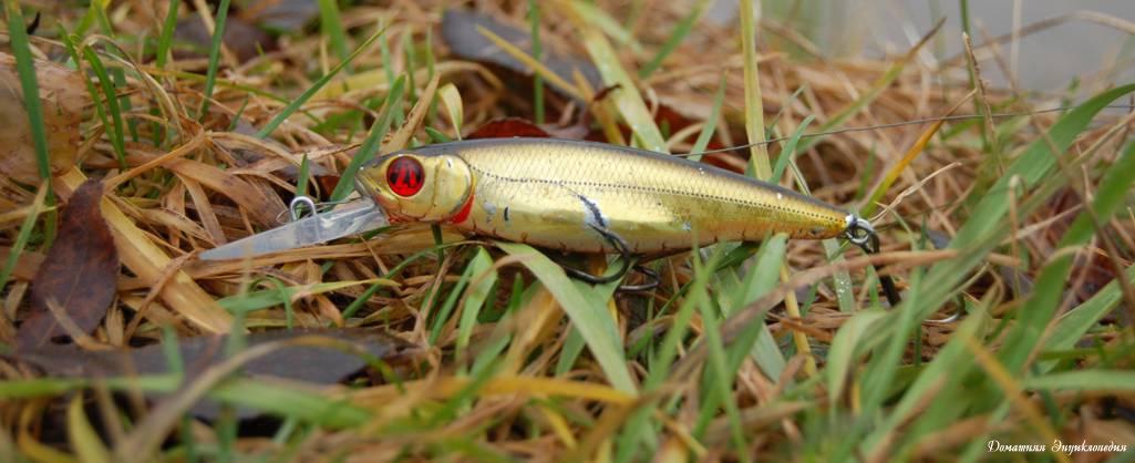 Рыбалка. Статьи о рыбалке. Спиннинг. Воблер компании Pontoon 21 Greedy Guts 77SP MDR.